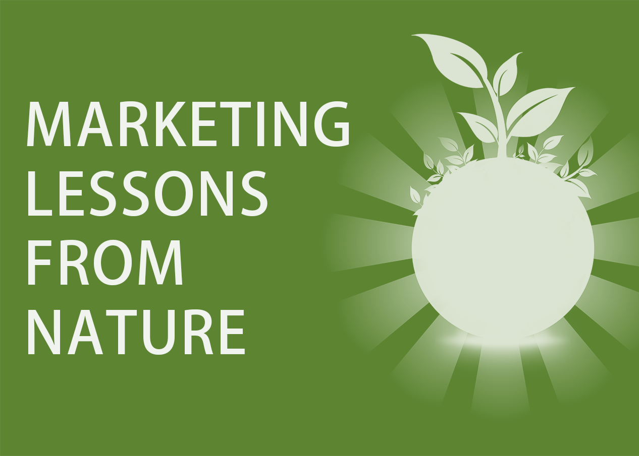 7 Important Marketing Lessons From Nature